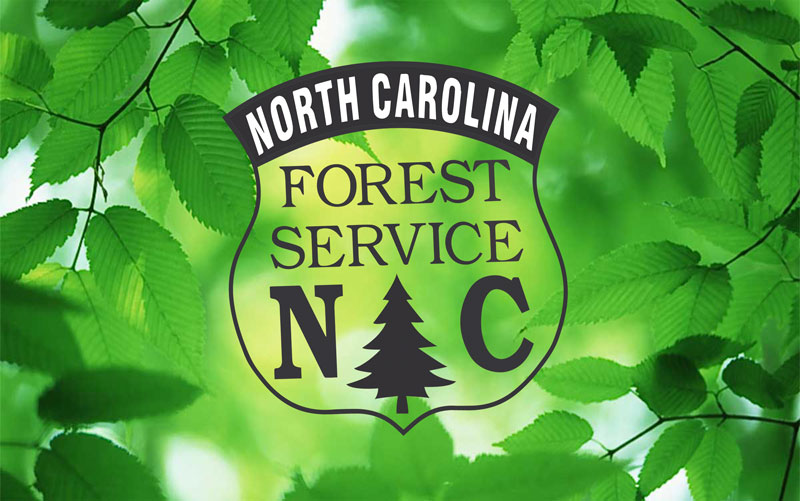 NCFS logo on natural background