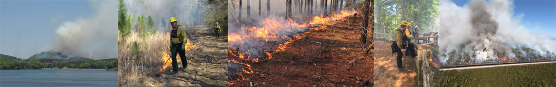 Various photos of prescribed burning activity